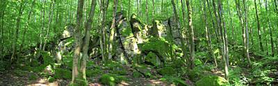 Photograph - Basaltic Cliffs by Sun Travels