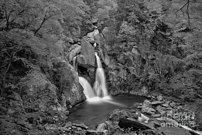 Photograph - Bash Bish Falls Fall Foliage Landscape Black And White by Adam Jewell