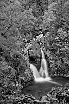 Photograph - Bash Bish State Park Fall Foliage Black And White by Adam Jewell
