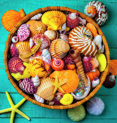 Photograph - Basket Full Of  Beautiful Seashells by Garry Gay