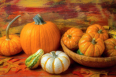 Photograph - Basket Of Small Pumpkins by Garry Gay