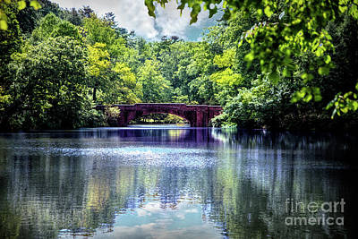 Photograph - Bass Pond At The Biltmore by Ed Taylor