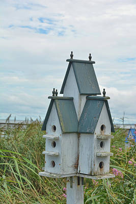 Photograph - Bay Front Birdhouse by Jamart Photography