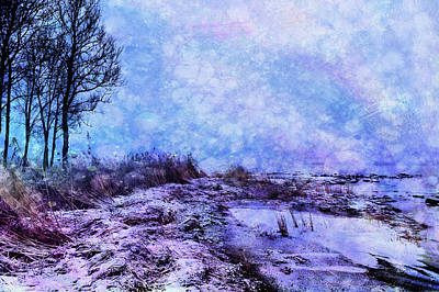 Photograph - Beach Calmness by Randi Grace Nilsberg