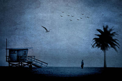 Photograph - Beach, Man, Tree, Birds by John Rodrigues