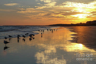 Photograph - Ocean Beach Reflections by Kevin McCarthy