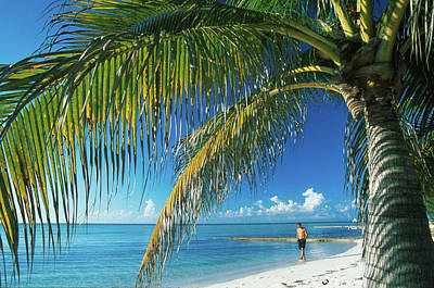 Antilles Photograph - Beach With Palm Tree At Rum Point by Jan Greune / Look-foto