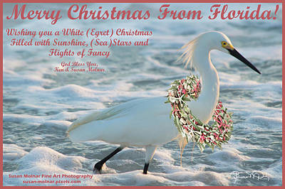 Photograph - Beachy Christmas by Susan Molnar