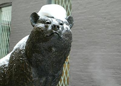 Catch Of The Day - Bear Sculpture by The Art Of Marilyn Ridoutt-Greene