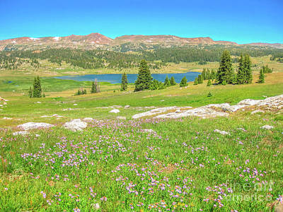 Photograph - Beartooth Highway Usa by Benny Marty