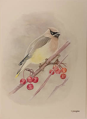 Painting - Beautiful Bird by Said Marie