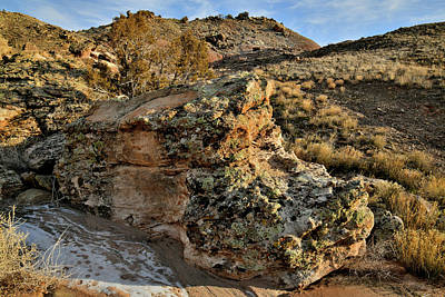Photograph - Beautiful Boulder On Backside Of Ruby Mountain by Ray Mathis