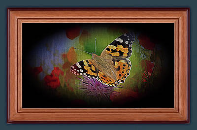 Mixed Media - Beautiful Butterfly Visitor by Clive Littin