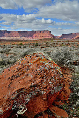 Photograph - Beautiful Castle Valley Along Colorado River In Utah by Ray Mathis