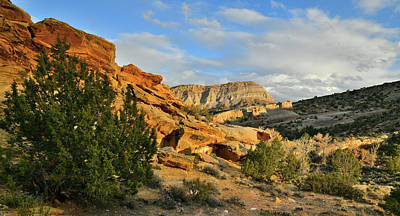 Photograph - Beautiful Clouds Over East Colorado National Monument by Ray Mathis