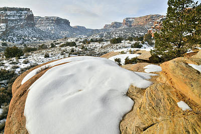 Photograph - Beautiful East Entrance Of Colorado National Monument by Ray Mathis