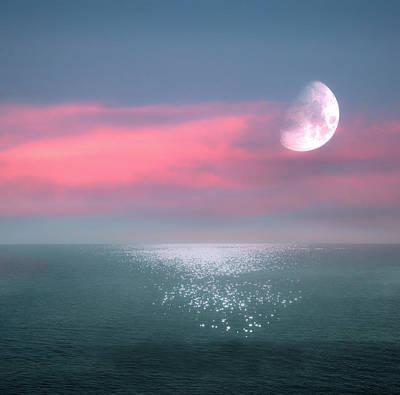 Dainty Daisies - Beautiful Evening In Dreamland By The Sea by Johanna Hurmerinta