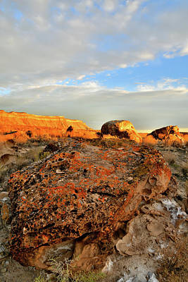 Photograph - Beautiful Evening In The Book Cliffs by Ray Mathis