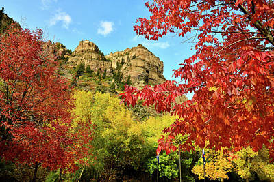 Photograph - Beautiful Fall Colors At Hanging Lake Rest Area by Ray Mathis