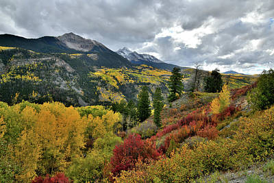 Photograph - Beautiful Fall Colors Beneath Hwy 145 Overlook by Ray Mathis