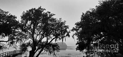 Photograph - Beautiful Fog by Robert Knight