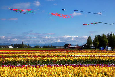 Photograph - Beautiful Kites And Tulip Fields by Garry Gay
