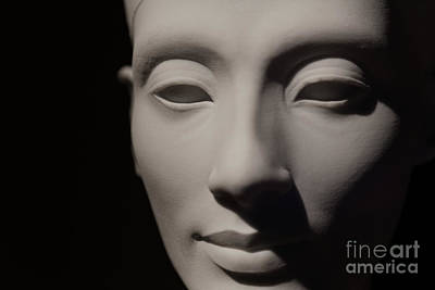 Photograph - Beautiful Nefertiti  by Sue Harper
