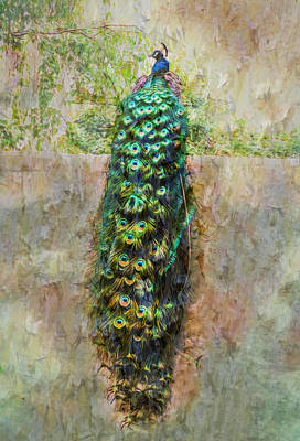 Photograph - Beautiful Peacock On The Wall Textured by Debra and Dave Vanderlaan