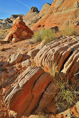 Photograph - Beautiful Sandstone Cove In Valley Of Fire by Ray Mathis