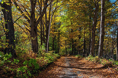 Photograph - Beautiful Vermont Road Woodstock Vt Vermont Autumn Foliage by Toby McGuire