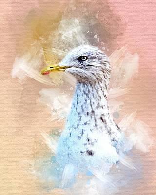Photograph - Beautiful Watercolor Seagull by Rachel Maytum