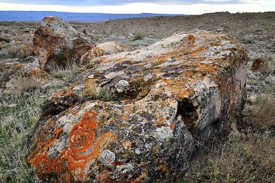 Photograph - Beautifully Colored Boulder In Book Cliff Desert by Ray Mathis