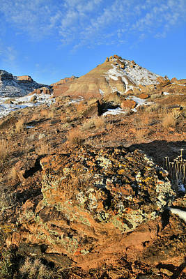 Photograph - Beautifully Colored Boulder On Ruby Mountain by Ray Mathis