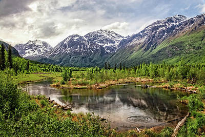 Beaver Pond, Eagle River Ak Art Print