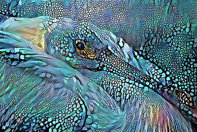 Photograph - Bedazzled Pelican by HH Photography of Florida