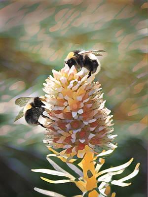 Digital Art - Bee Bee by David Bader