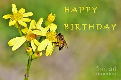 Soap Suds - Bee Birthday Card by Dennis Nelson