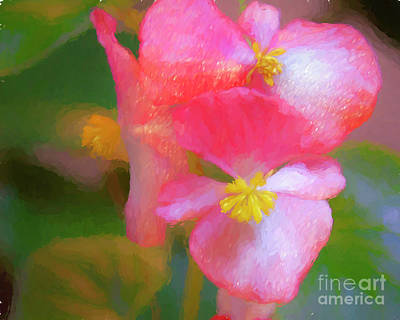 Mixed Media - Begonia by Susan Lafleur