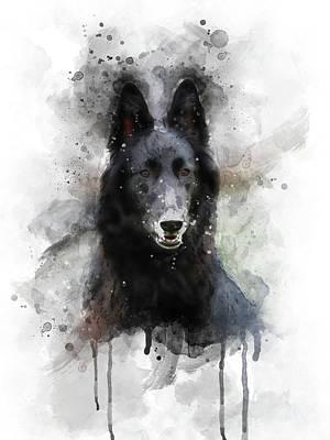 Watercolor Pet Portraits Digital Art - Belgian Shepherd by Aged Pixel
