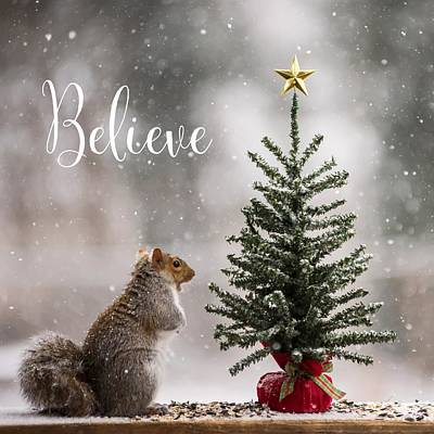 Photograph - Believe Christmas Tree Squirrel Square by Terry DeLuco