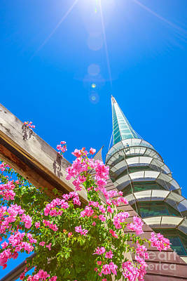 Photograph - Bell Tower In Summer Season by Benny Marty