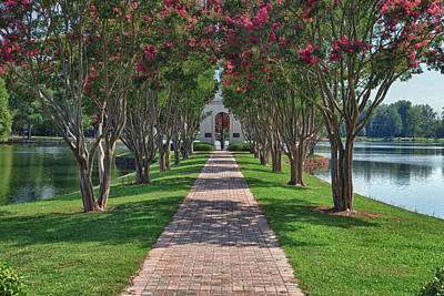 Pittsburgh According To Ron Magnes - Furman University Bell Tower Path by Rich Nicoloff
