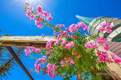 Photograph - Bell Tower With Flowers by Benny Marty