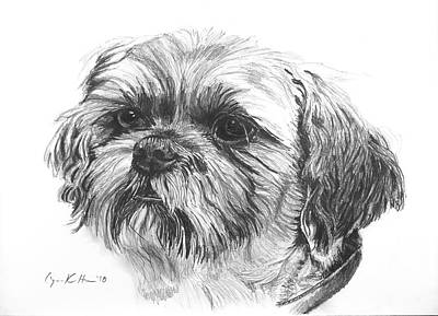 Drawing - Beloved Pet Dog by Lynn Hansen