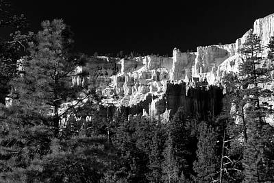 Photograph - Below The Rim Bryce Canyon by Ed  Riche