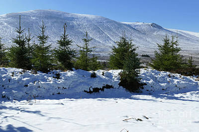 Photograph - Ben Rinnes From Kelter Wood by Phil Banks