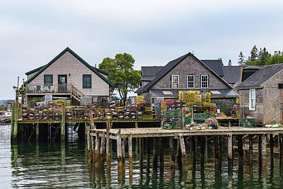 Photograph - Bernard Harbor Docks by Stefan Mazzola