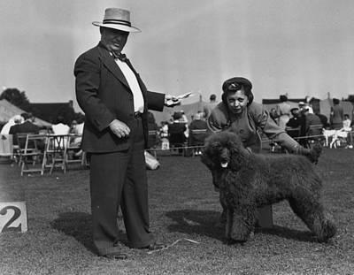 Dog Photograph - Best Puppy by Bert Morgan