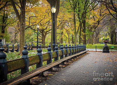 Photograph - Bethesda Benches by Inge Johnsson