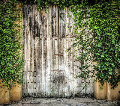 Photograph - Beyond The Gate by Steph Gabler